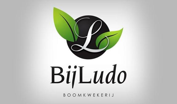 bijludo-logo