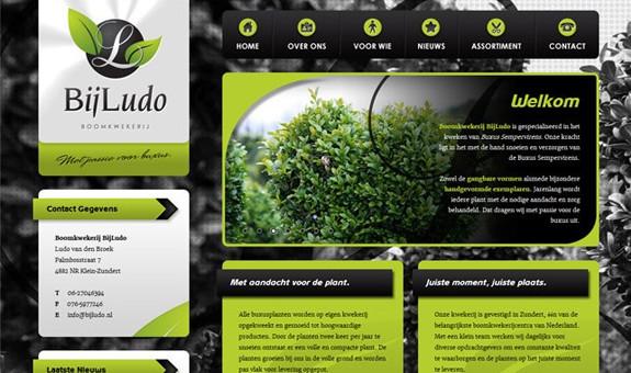 bijludo-website